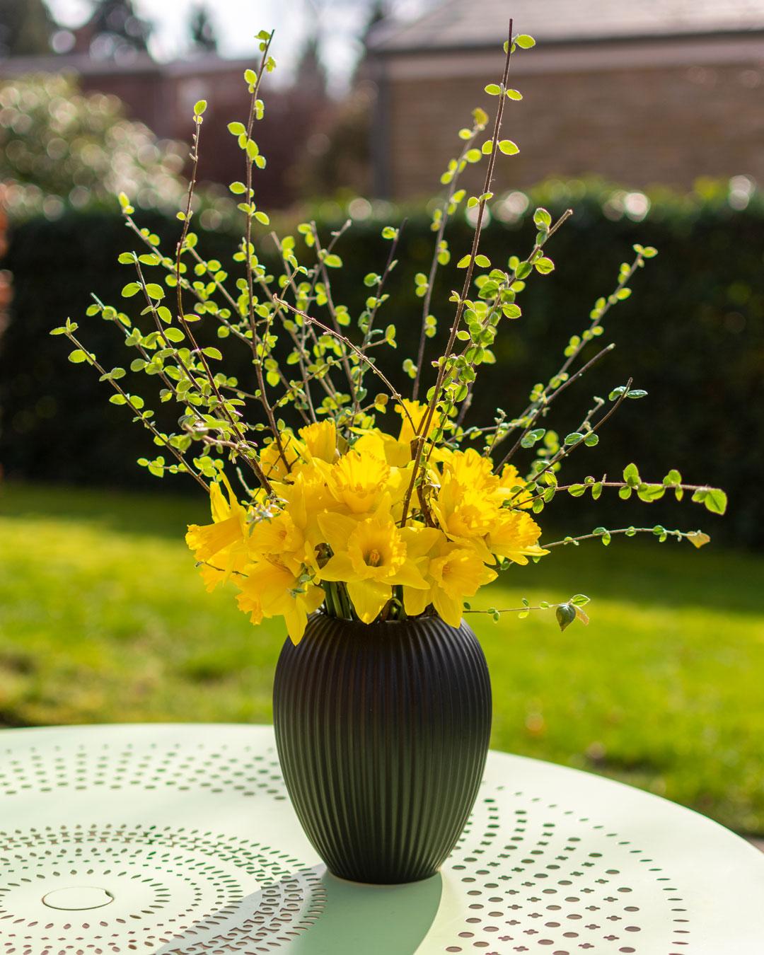 Sort vase fra Michael Andersen på lysegrønt havebord med gule påskeliljer og hækplante